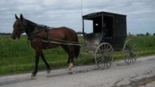 遠離艾米許家園Inside Amish Out of Order 節目