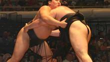 Inside sumo show