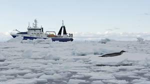 Expedice Antarktida