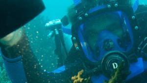 Dive Detectives