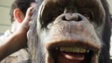 """""""猿""""始人Ape Man 節目"""