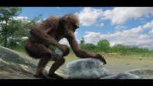 Scimpanzé a mano armata programma