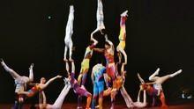 中國馬戲秀 China Circus 節目
