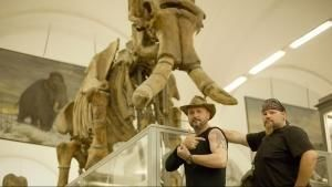 Mammoths Unearthed