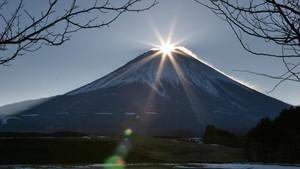 日本野性大地 Japan's Hidden Secret