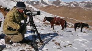 上山下海拍動物 World's Wildest Encounters