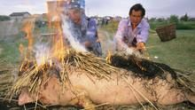 馬可波羅:現代東遊記 # 2 Marco Polo 節目