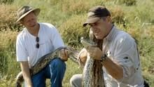 Giant Snake Week show