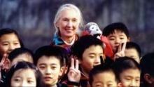 Jane Goodall: diario dalla Cina programma