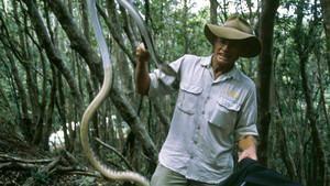 Snake Wranglers