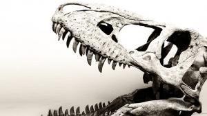 Più grande del T-Rex