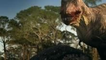 Dino Death Match show