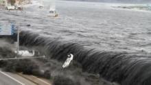 Tsunami in Giappone programma