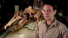 Dinosaurs: Amazing Beasts show