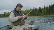 إصلاحات ألاسكا العملاقة برنامج