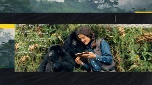 Dian Fossey被殺之謎
