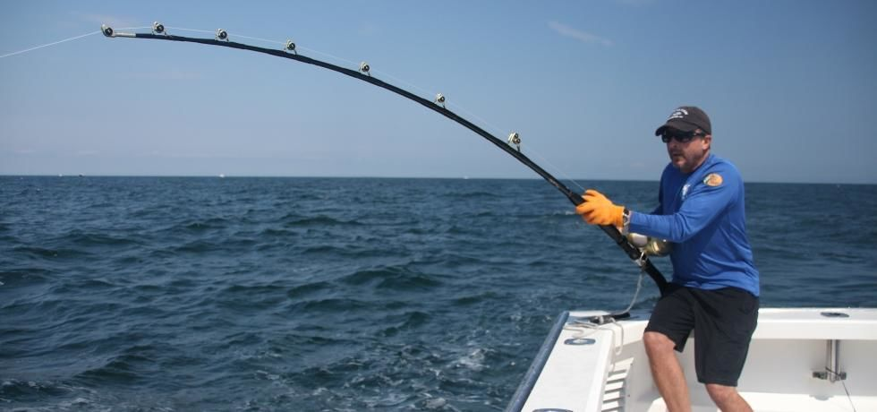 ماهی تن شرور