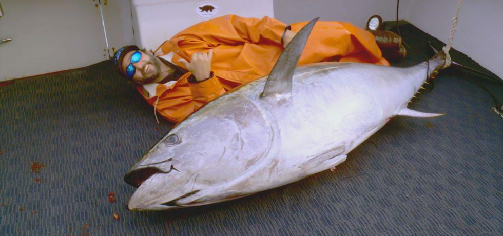Wicked Tuna - North Vs South