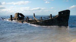 اكتشاف عالم المحيطات: الغوص في الأعماق