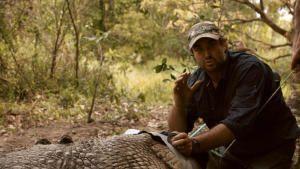 Monster Croc Wrangler show