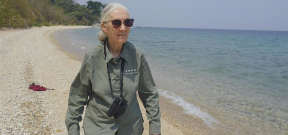 Earth Day: Jane Goodall: The Hope