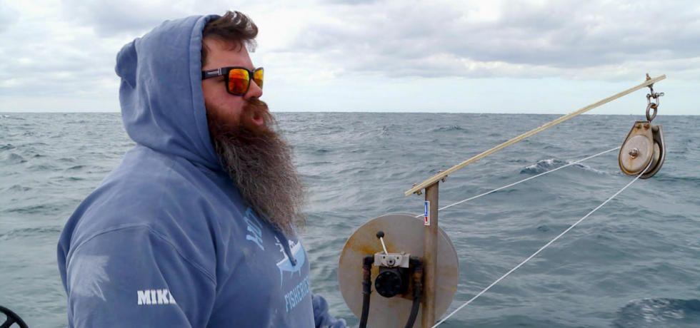 سمكة التونة العنيدة: الشمال vs الجنوب