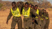 الأكاشينغا: حارسات الحياة البرية برنامج
