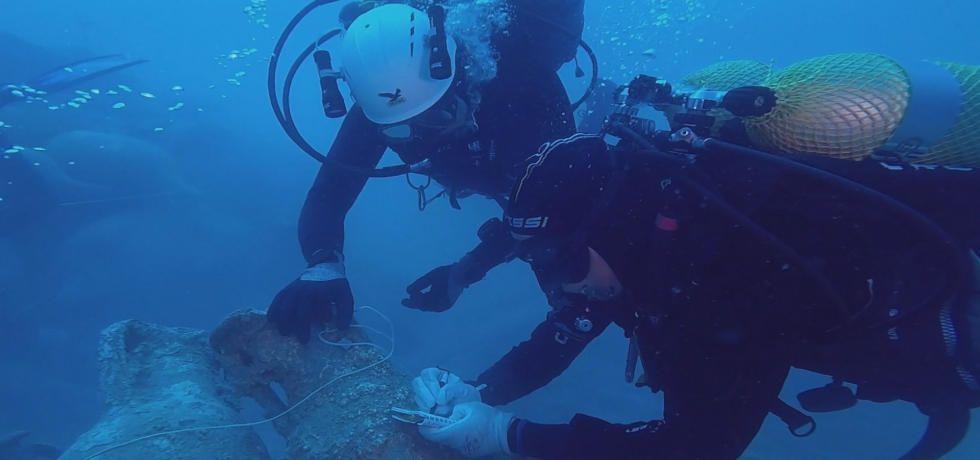 海底大探索