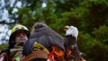 阿拉斯加動物救援隊:危險救援 節目