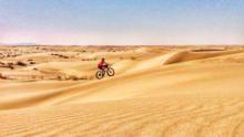 沙漠之鑽 節目