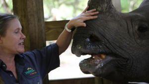أسرار حديقة الحيوان - تامبا