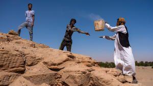 مقابر النيل الغارقة – قبور الفراعنة السود الغارقة