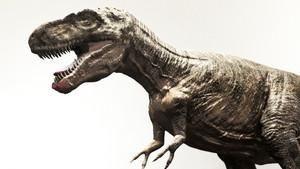 侏羅紀犯罪現場 Jurassic C.S.I.