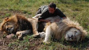 獅子好朋友 The Lion Ranger