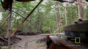 Swamp Hideout photo