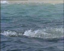 Ocean Hunters photo