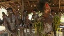 Papua New Guinea show