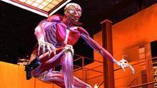 Superhuman: Strongman show