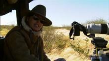 Filming Zebras show