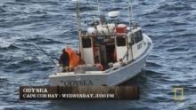 Tuna Wars 節目
