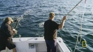 A Fisherman's Wisdom photo