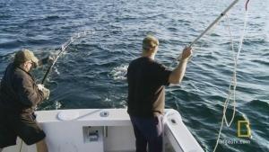 A Fisherman's Wisdom 照片