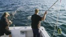 A Fisherman's Wisdom 節目