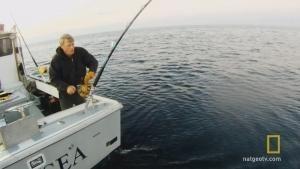 Solo Tuna Fishing photo