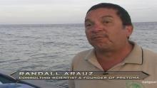 Open Ocean Perils show
