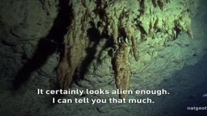 Underwater Graveyard photo