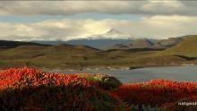 Torres del Paine National Park show