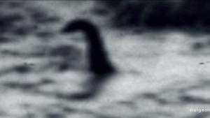 Loch Ness Dinosaur? photo