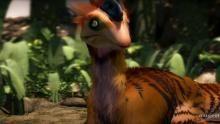 The Ovaraptor show