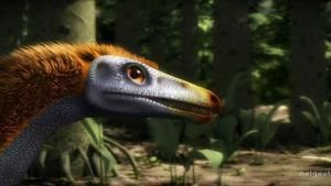 The Feathered Dinosaur photo